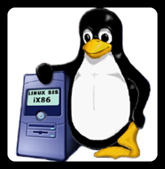 Il server naturalmente usa GNU/Linux